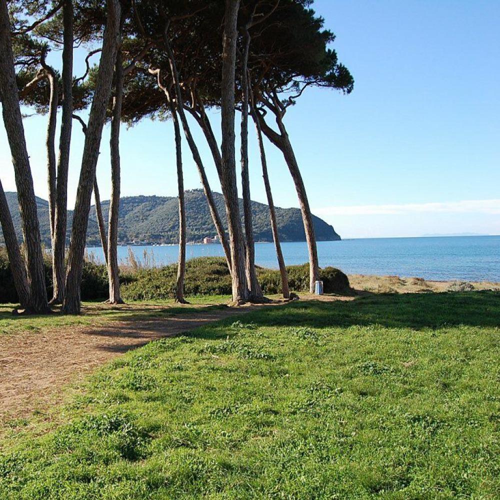 Tour in Vespa lungo la Costa degli Etruschi