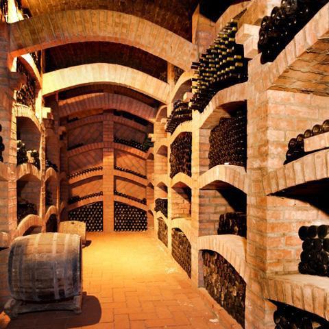 Bolgheri un borgo di-vino