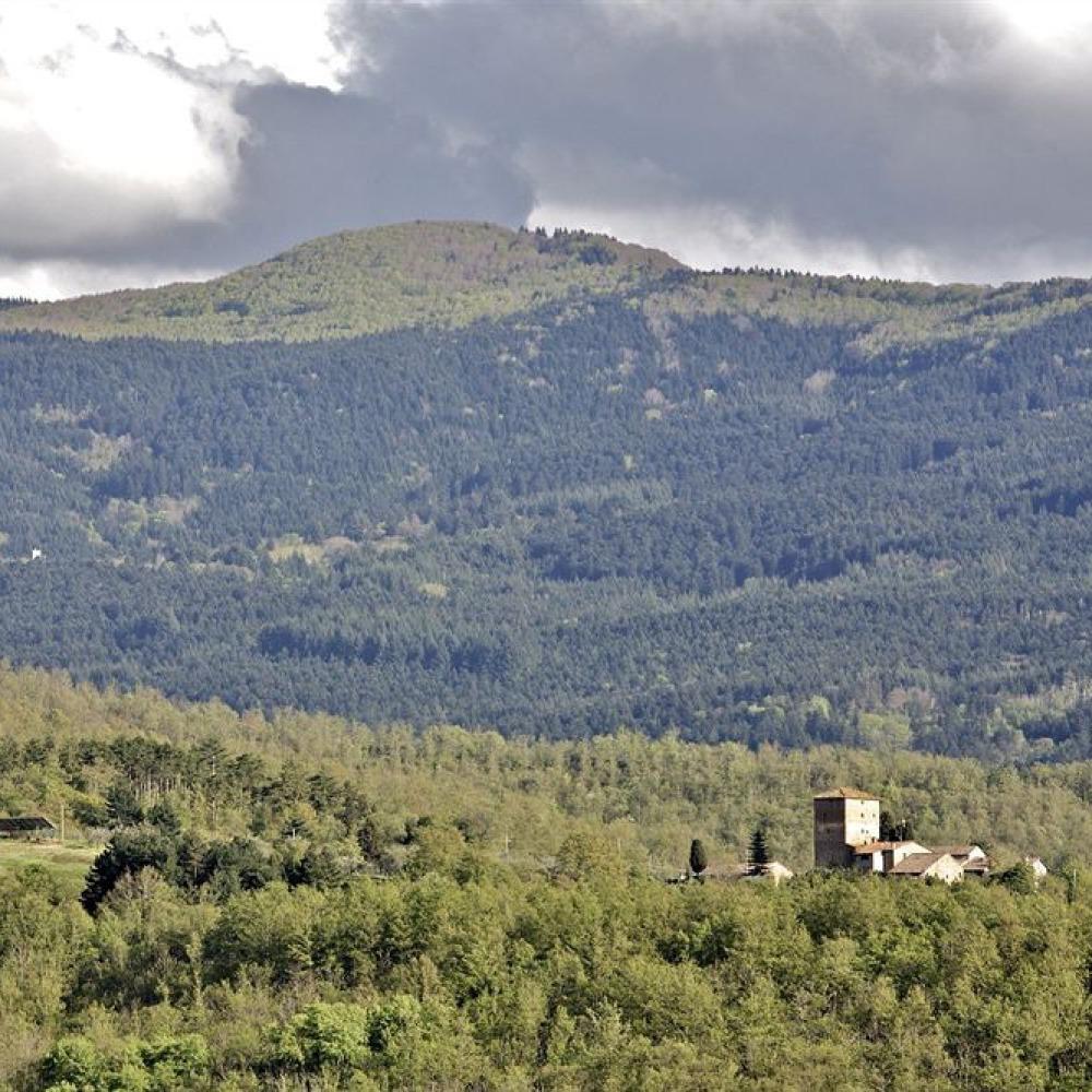Castello medievale nei boschi del Valdarno