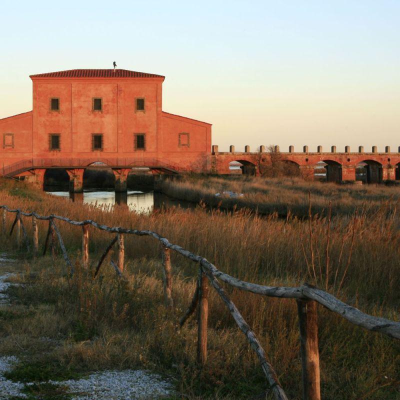 Castiglione e costa Maremmana a cavallo