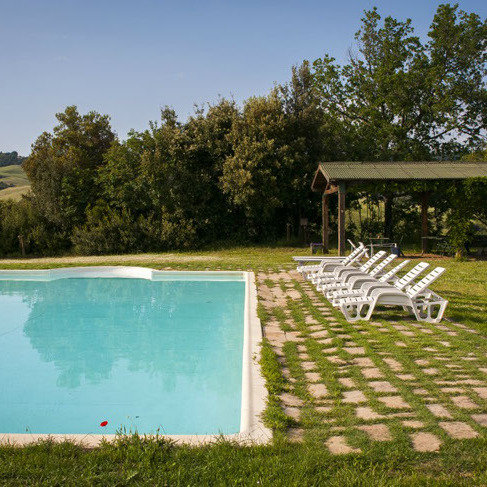 Farmhouse with animals, wine, woods and pool